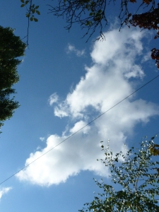 Blue Sky Dissected by Telephone Cable