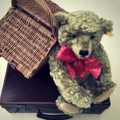 Social Media – Teddy refugee