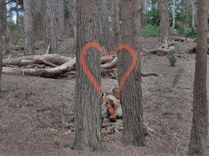 My favourite. Parts of the heart are even painted on bits of debris over 15m apart.